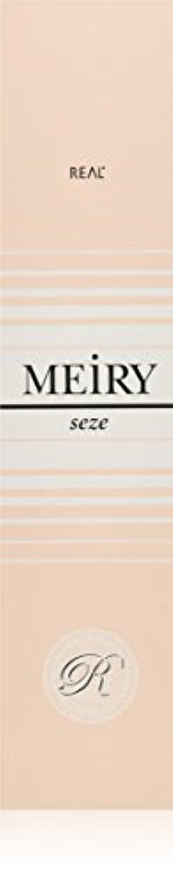 チャレンジ自伝セッティングメイリー セゼ(MEiRY seze) ヘアカラー 1剤 90g 6NB