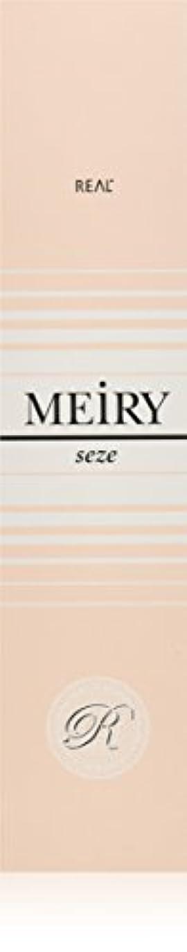 可能砂全体メイリー セゼ(MEiRY seze) ヘアカラー 1剤 90g 6NB