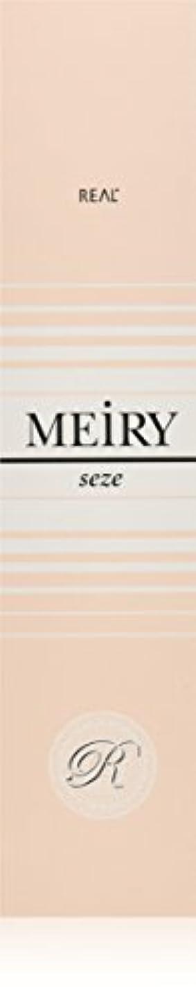 ボトルトマトハイキングに行くメイリー セゼ(MEiRY seze) ヘアカラー 1剤 90g 6NB