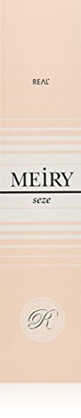 パキスタン人孤児パターンメイリー セゼ(MEiRY seze) ヘアカラー 1剤 90g 6NB