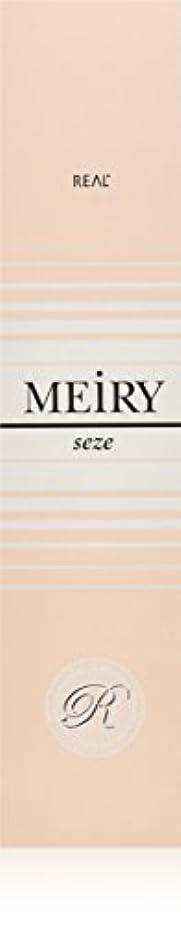 編集する勧めるフォームメイリー セゼ(MEiRY seze) ヘアカラー 1剤 90g 6NB