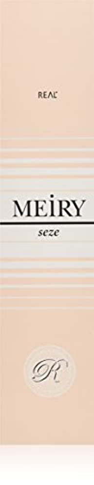 ベイビー北方出費メイリー セゼ(MEiRY seze) ヘアカラー 1剤 90g 6NB