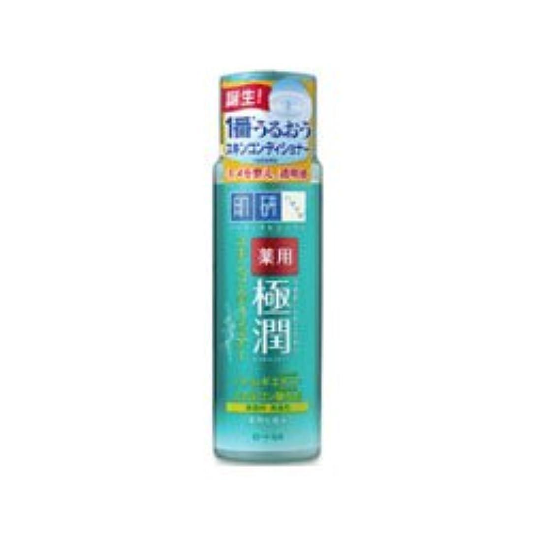 アヒルスカイポーター【ロート製薬】肌研 薬用極潤スキンコンディショナー 170ml(医薬部外品) ×3個セット