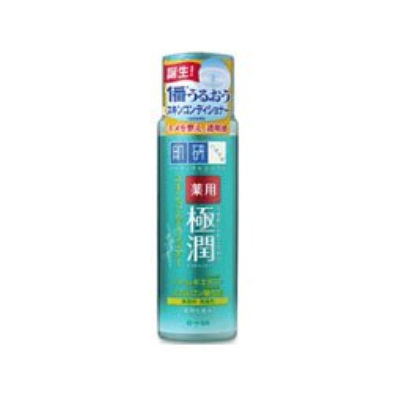 面積勧める買い手【ロート製薬】肌研 薬用極潤スキンコンディショナー 170ml(医薬部外品) ×3個セット