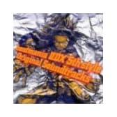 beatmania II DX 5th style Original Soundtracks