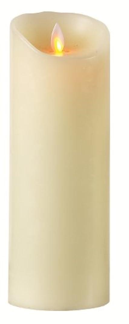 無声でペンフレンドキュービックBoston Warehouse Mystique Flameless Candle, 9-Inch, Ivory by Boston Warehouse