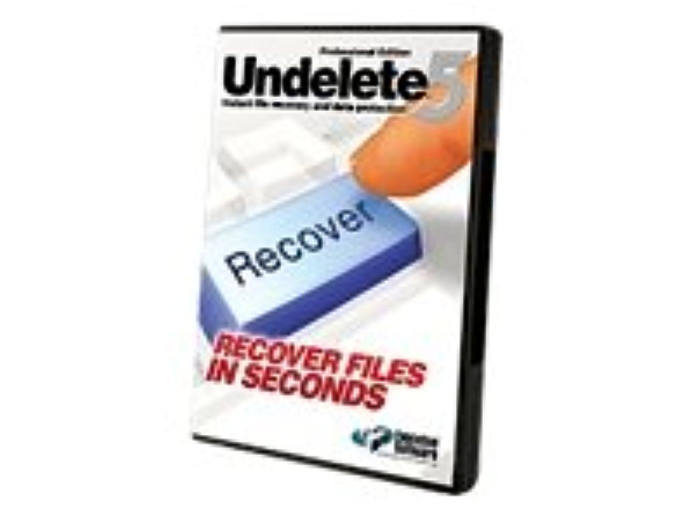 なくなるパール震えるUndelete 5 for Windows (E) Server