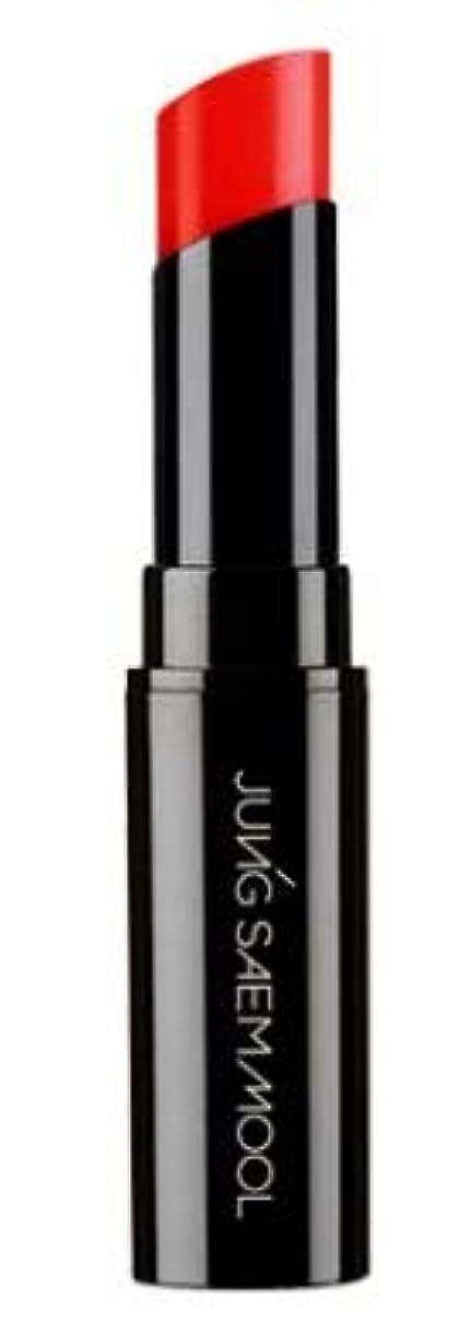 トロリーバスたっぷり家庭JUNGSAEMMOOL Essential Tinted Lip Glow/エッセンシャルティンテッドリップグロー (#RedGlow) [並行輸入品]