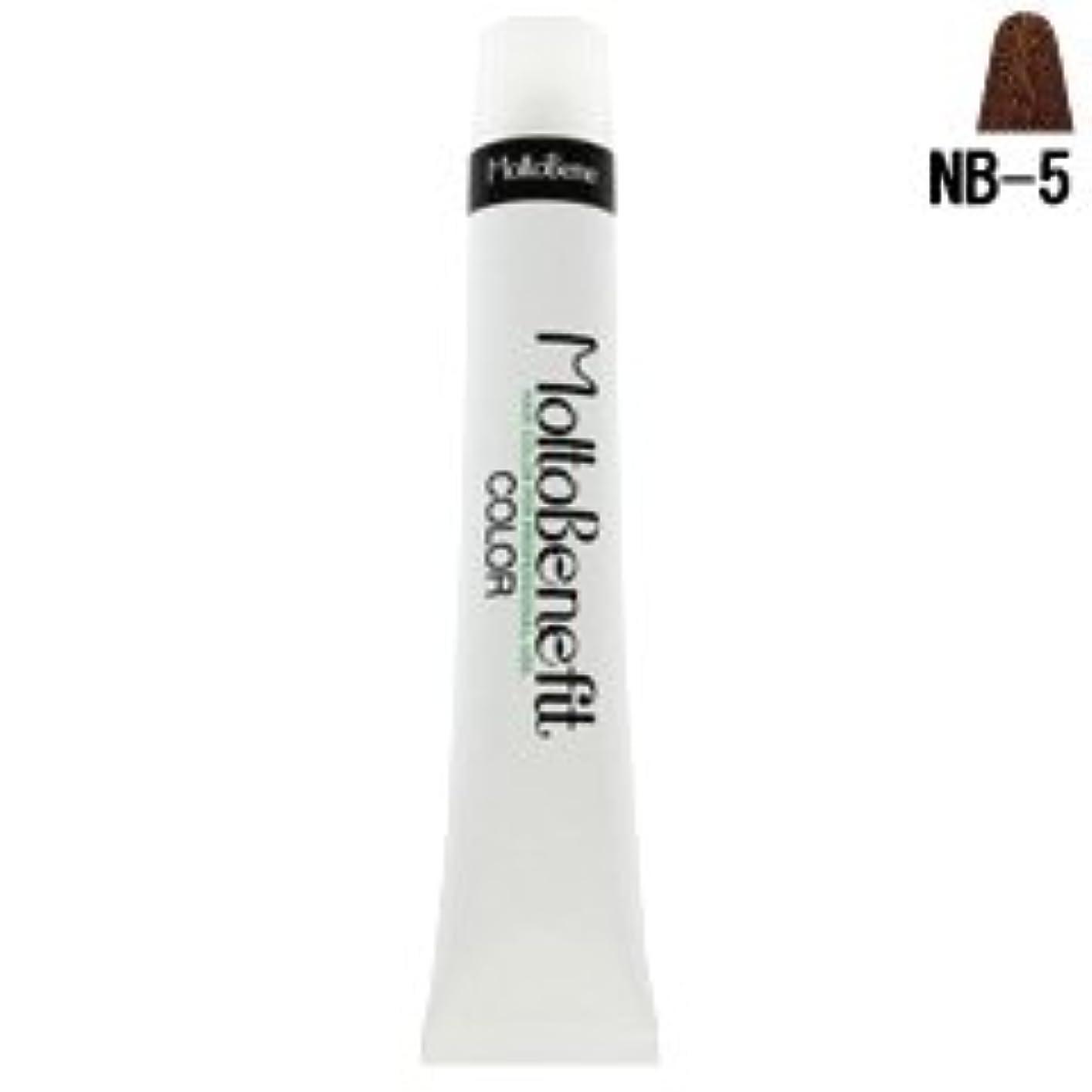 性的母性土【モルトベーネ】フィットカラー グレイナチュラルカラー NB-5 ナチュラルブラウン 60g