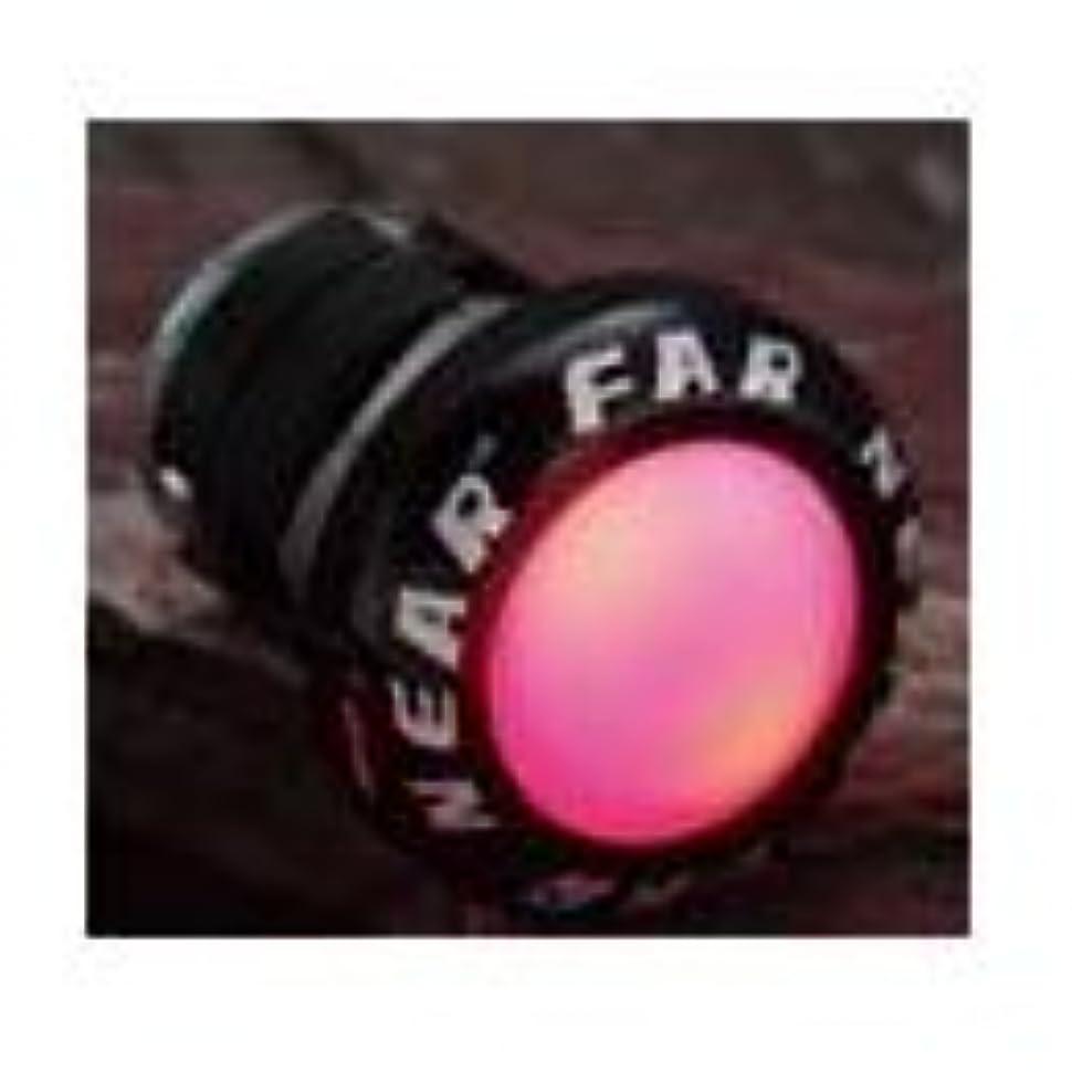 プリーツ目覚める斧ファーアンドニア LED Plug ブラック 2個入り