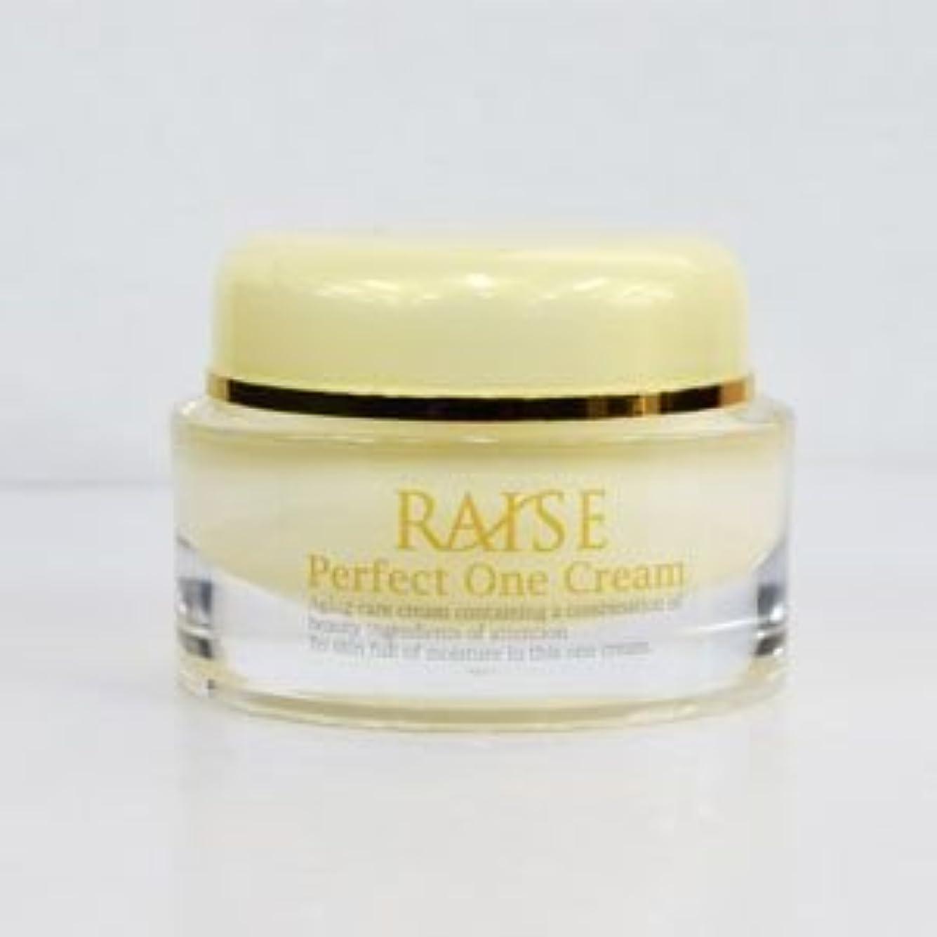 アクセントロードされた基本的なRAISE (レイズ) Perfect One Cream パーフェクトワンクリーム 活性型FGF 活性型EGF 馬プラセンタ コラーゲン オールインワン クリーム 50g
