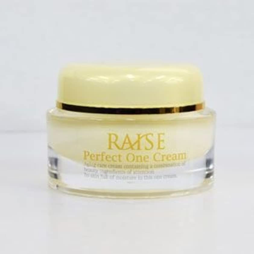 鋸歯状タックルくさびRAISE (レイズ) Perfect One Cream パーフェクトワンクリーム 活性型FGF 活性型EGF 馬プラセンタ コラーゲン オールインワン クリーム 50g