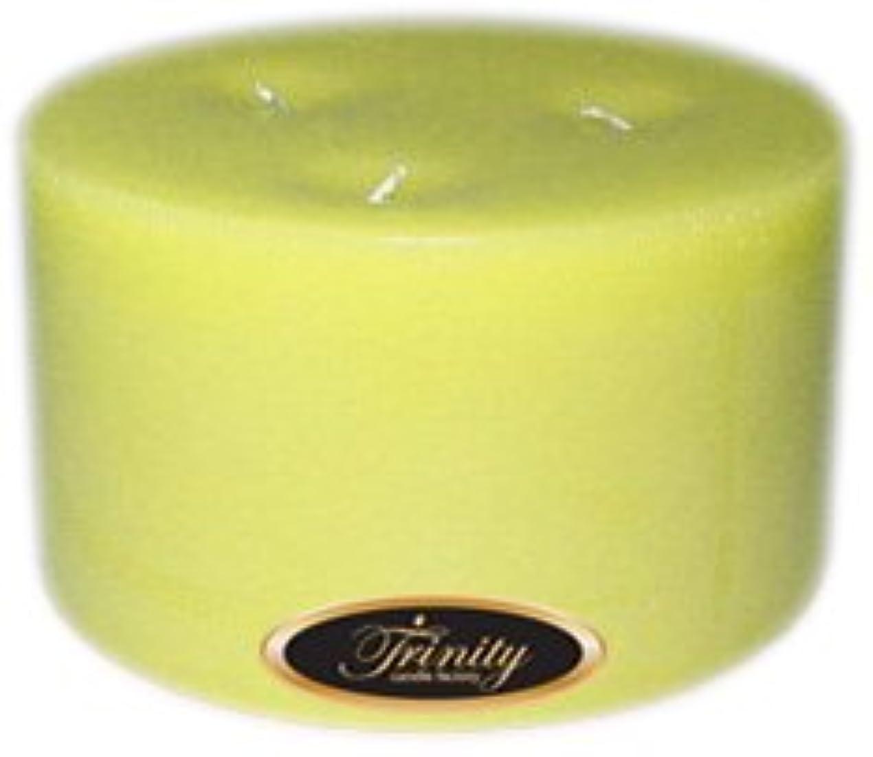 かすれた光オープニングTrinity Candle工場 – Gardenia – Pillar Candle – 6 x 3