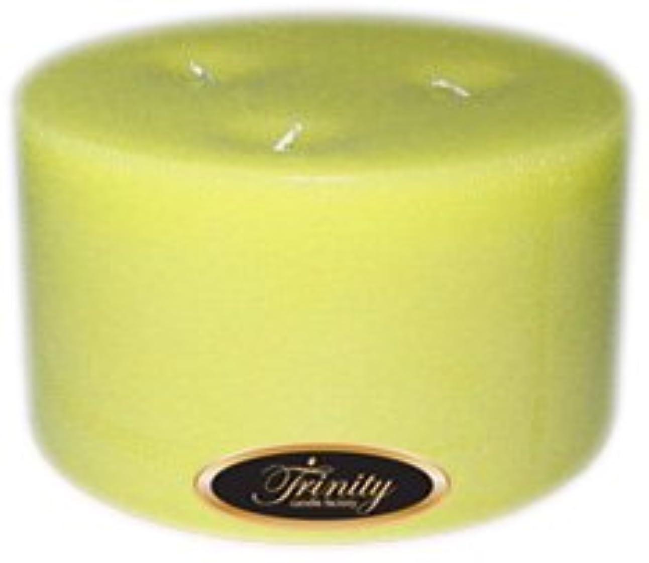 袋インゲン反論者Trinity Candle工場 – Gardenia – Pillar Candle – 6 x 3
