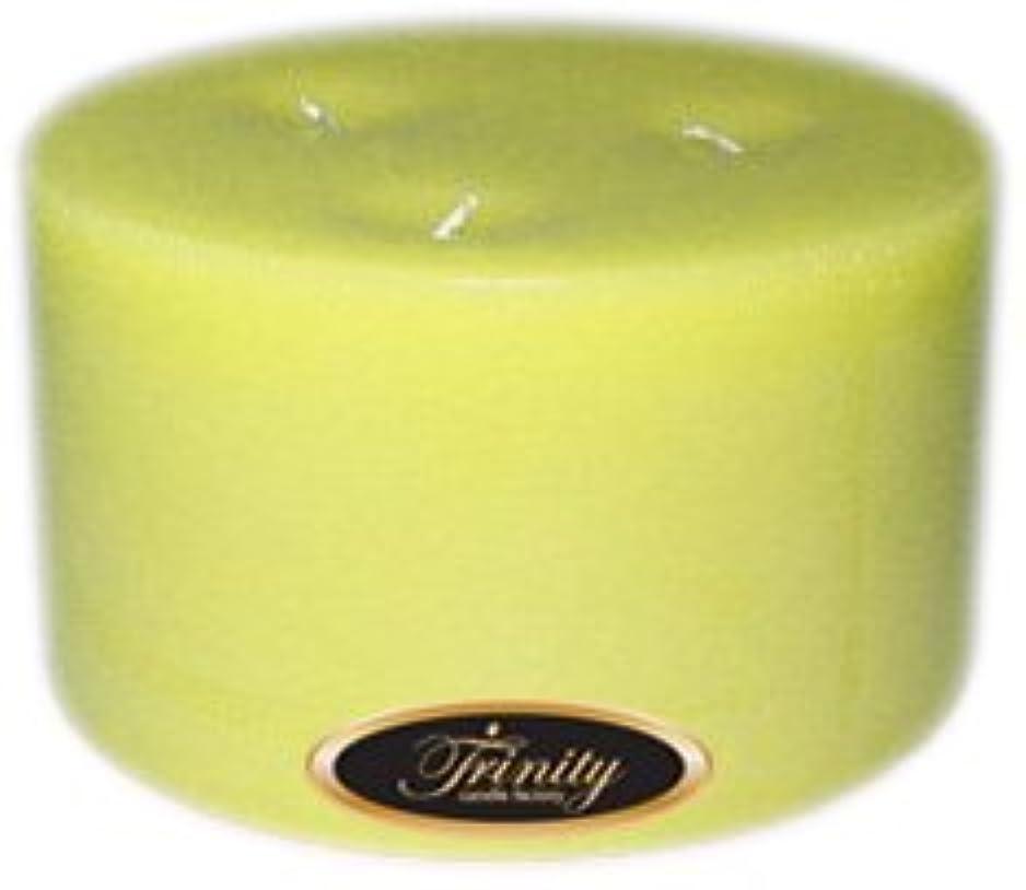 圧縮された以前は乱気流Trinity Candle工場 – Gardenia – Pillar Candle – 6 x 3