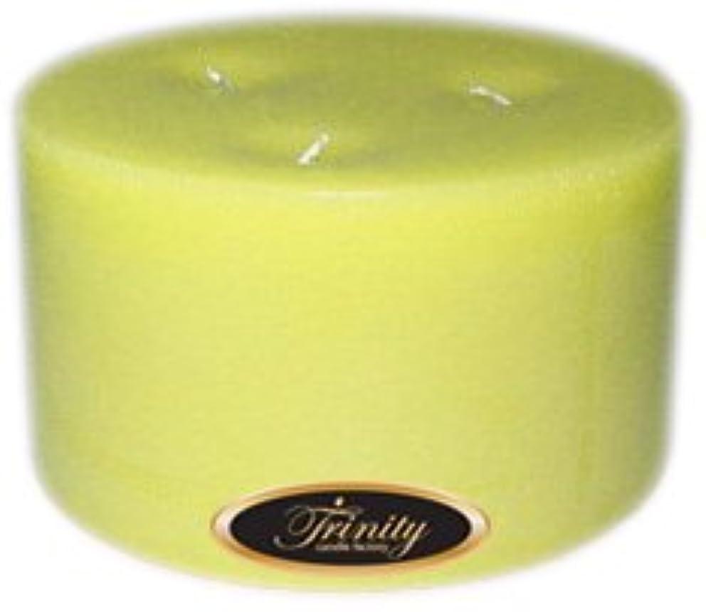 真面目なかすかな唯一Trinity Candle工場 – Gardenia – Pillar Candle – 6 x 3