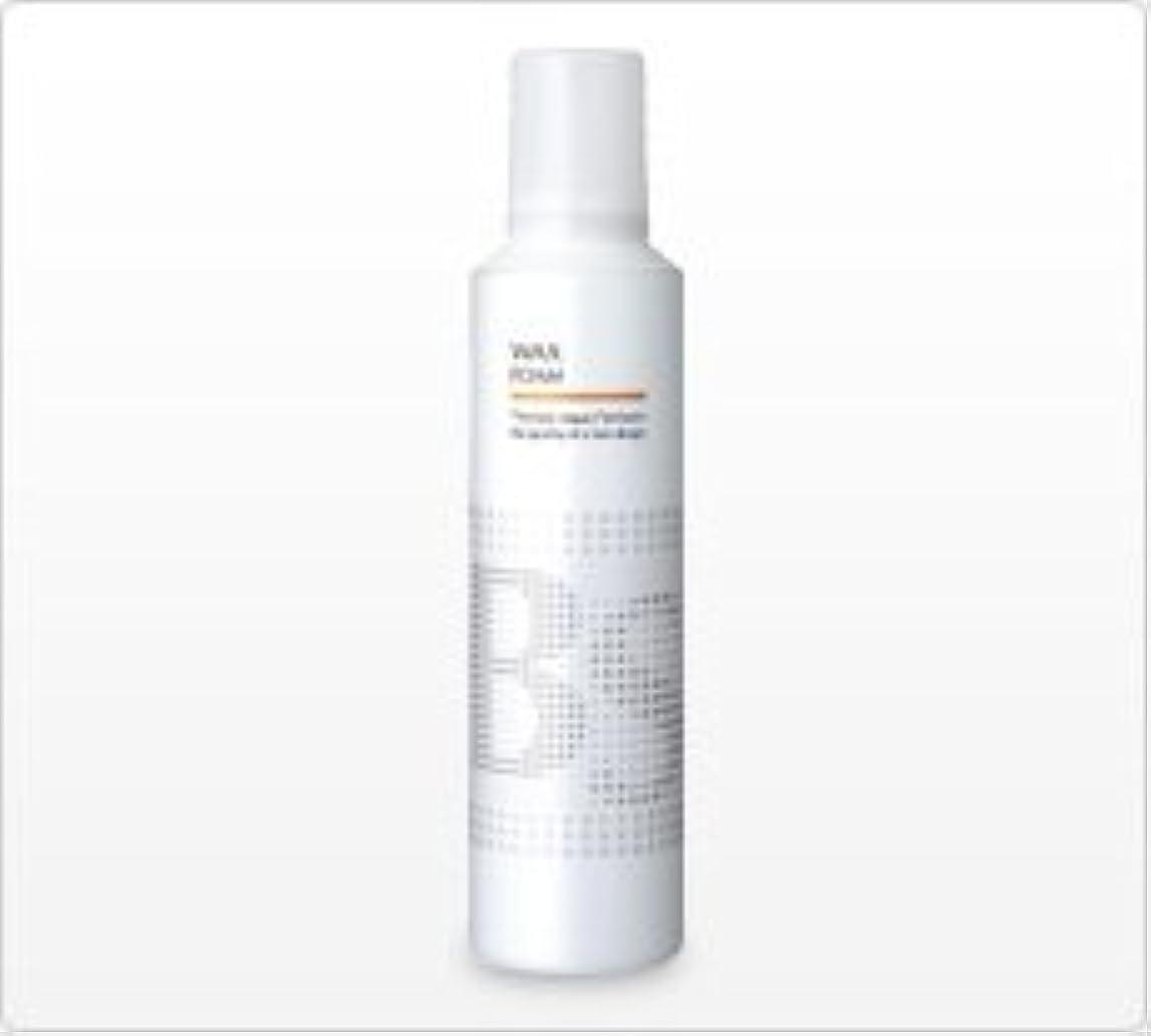 知覚意識的段階アリミノ BSスタイリング ワックス フォーム230g スタイリング剤 ムース