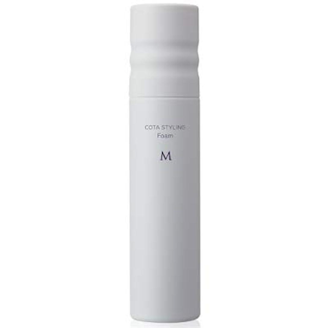 メタルラインドライバ叙情的なコタ スタイリング フォーム M 120g