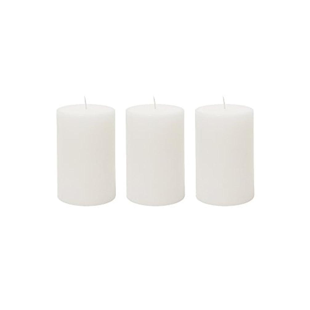 調べる列車びっくり(3, 5.1cm x 7.6cm Round) - Mega Candles 3 pcs Unscented White Round Pillar Candle Hand Poured Premium Wax Candles...