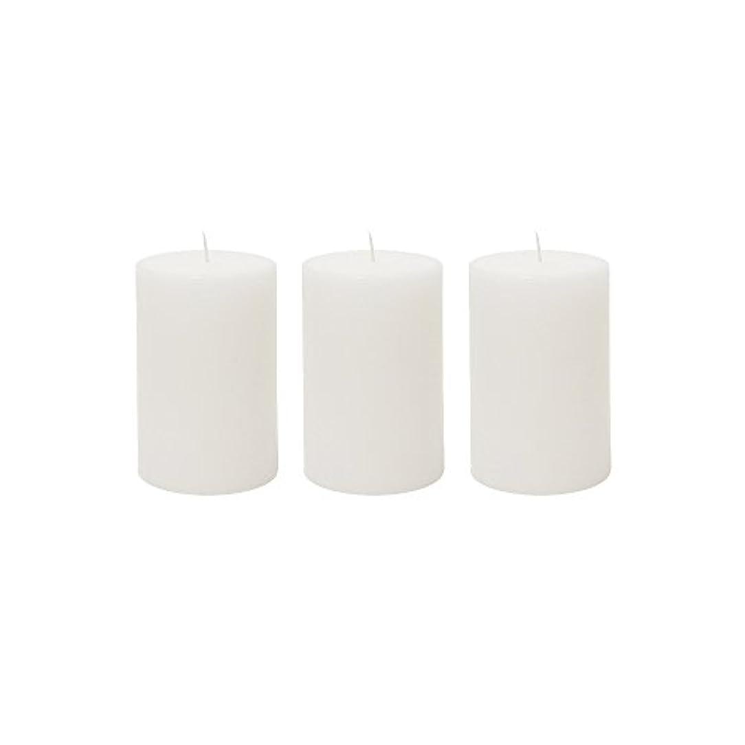 クラフト恨み誘導(3, 5.1cm x 7.6cm Round) - Mega Candles 3 pcs Unscented White Round Pillar Candle Hand Poured Premium Wax Candles...