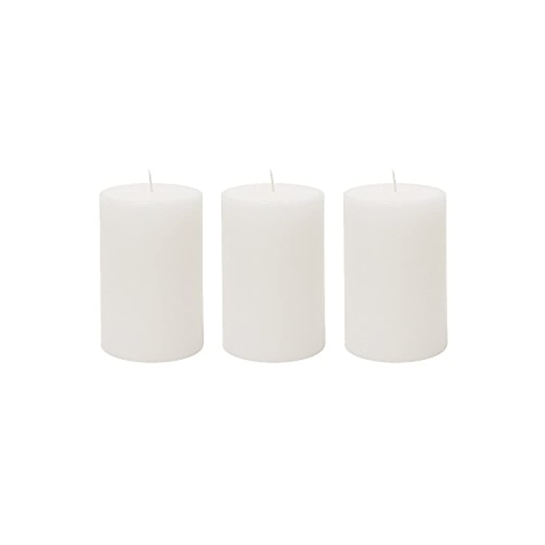 水差しバルコニー世界記録のギネスブック(3, 5.1cm x 7.6cm Round) - Mega Candles 3 pcs Unscented White Round Pillar Candle Hand Poured Premium Wax Candles...