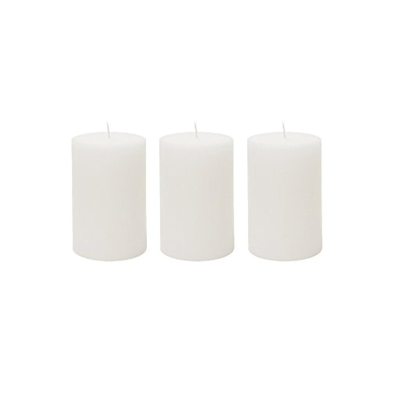 魅力的範囲アーサーコナンドイル(3, 5.1cm x 7.6cm Round) - Mega Candles 3 pcs Unscented White Round Pillar Candle Hand Poured Premium Wax Candles...