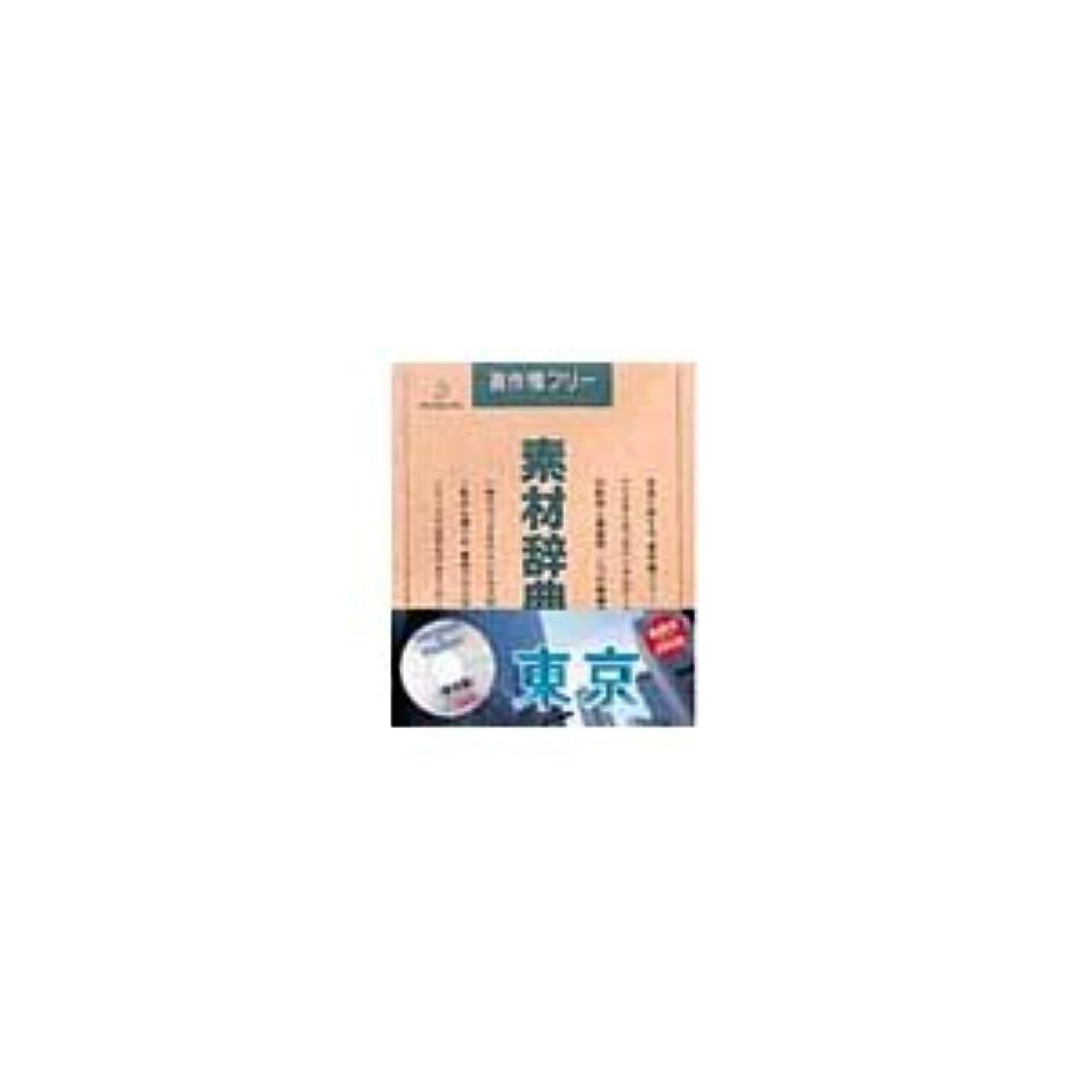 部屋を掃除する女優貯水池写真素材 素材辞典Vol.45 東京