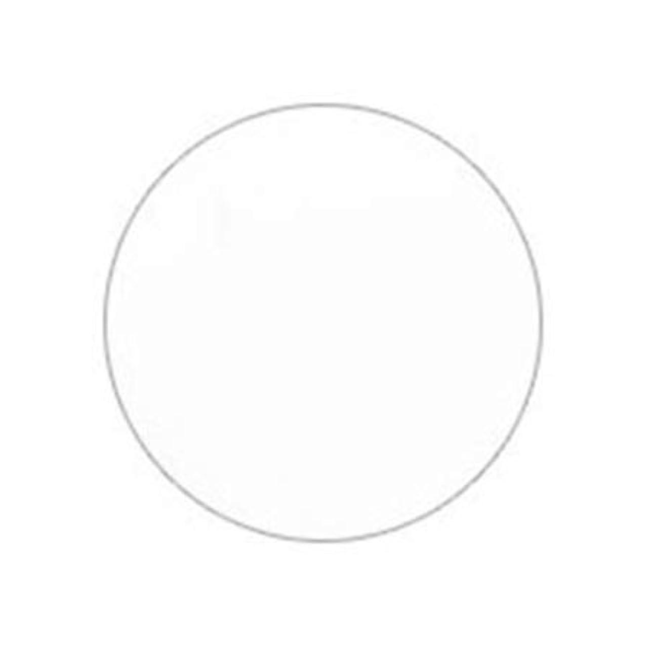 シャイニングおとうさんロバPutiel プティール カラージェル 201 ホワイト 4g