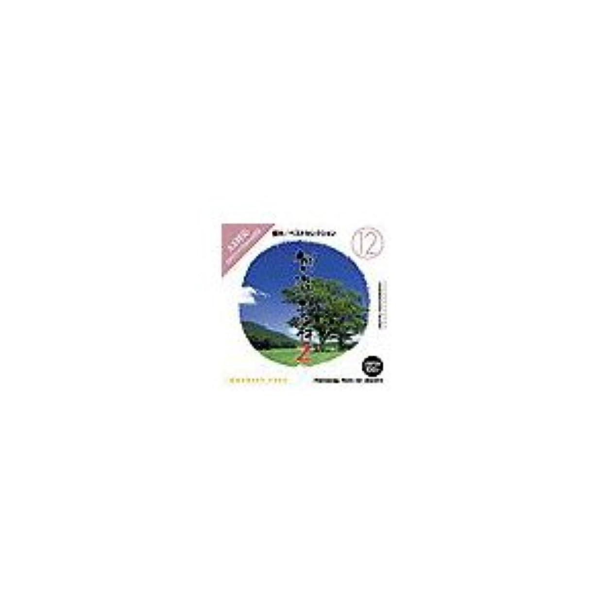 写真素材 創造素材 Zシリーズ (12) 樹木/ベストセレクション ds-68245