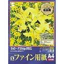 SANWA SUPPLY JP-S100CA4 インクジェットプリンタ用紙 (カラー A4/100