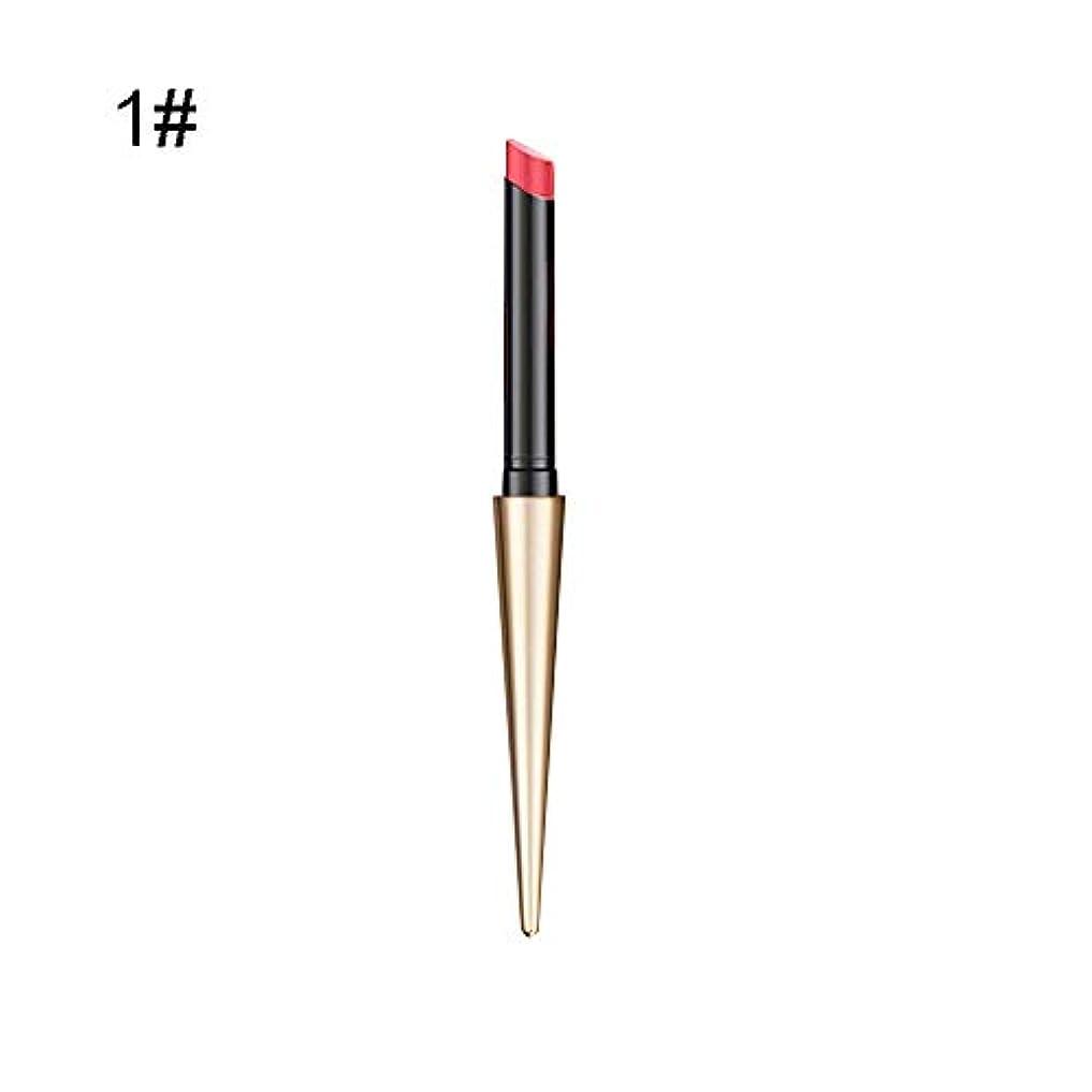 告白する綺麗なヘアリップスティック 10色 マット 筆 ボールヘッド リップグレーズ 防水 耐久性 リップバーム 化粧 チューブ 口紅 真新しい グラデーションリップ 一筆書きで高輝度色で美しい唇を彩りルージュhuajuan (A)