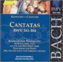 Church Cantatas-Volume. 49