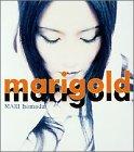 Marigold 画像