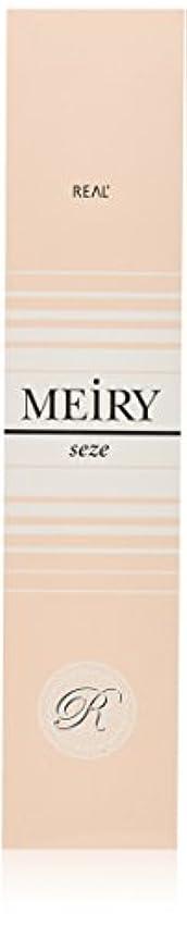 チューインガム子供達風景メイリー セゼ(MEiRY seze) ヘアカラー 1剤 90g 5WB