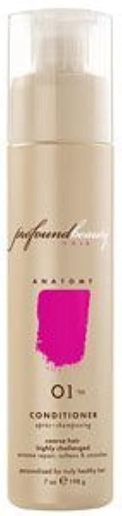 カニパスタ立方体Profound Beauty Hair 深遠な美し01/99コンディショナー - 30オンス