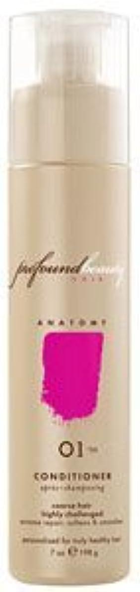 債権者作り可能性Profound Beauty Hair 深遠な美し01/99コンディショナー - 30オンス