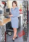 超最高級秘書 [DVD]