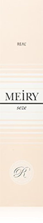 毛皮洪水肉腫メイリー セゼ(MEiRY seze) ヘアカラー 1剤 90g ピンク