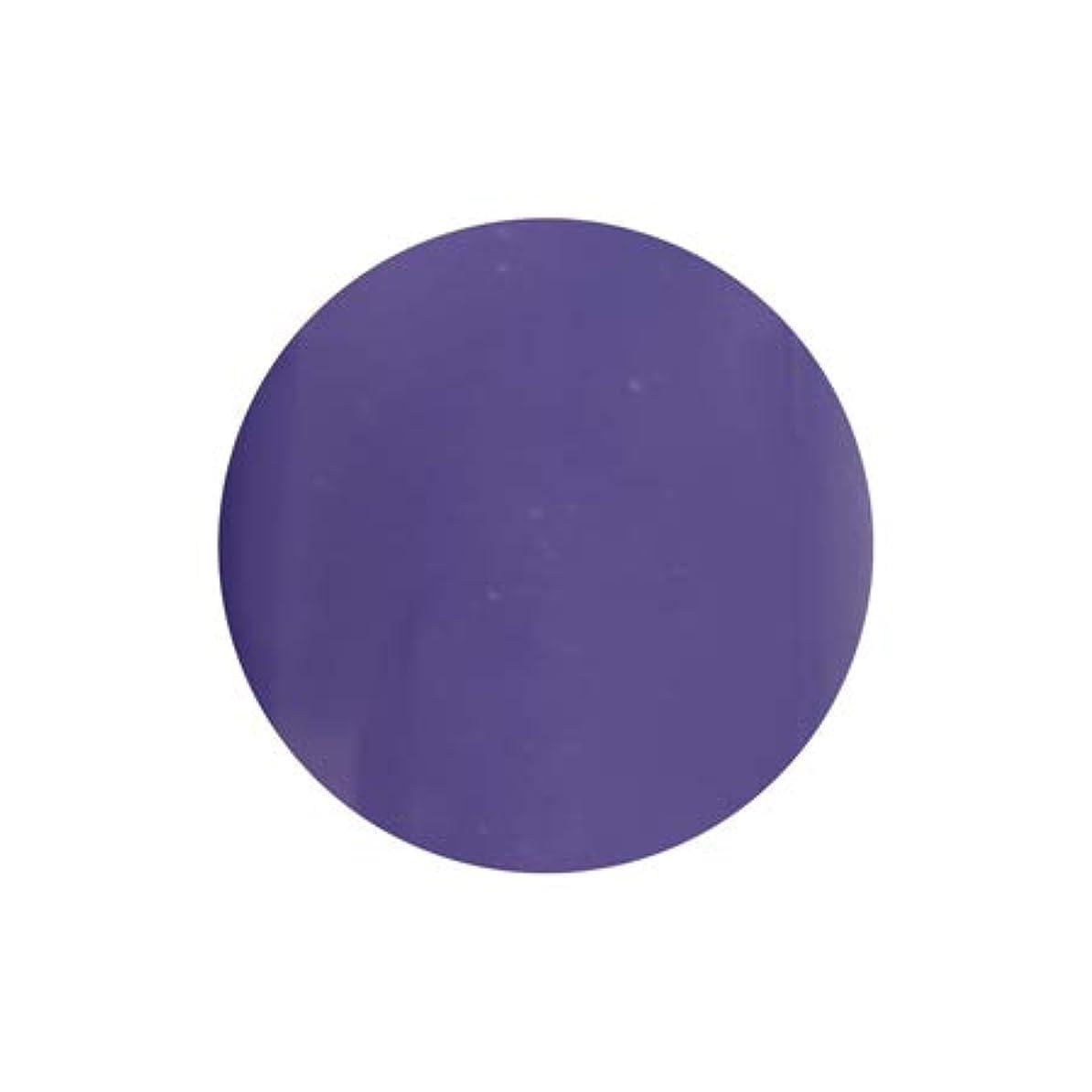 アミューズ説教するボーナスT-GEL COLLECTION カラージェル D228 シフォンバイオレット 4ml