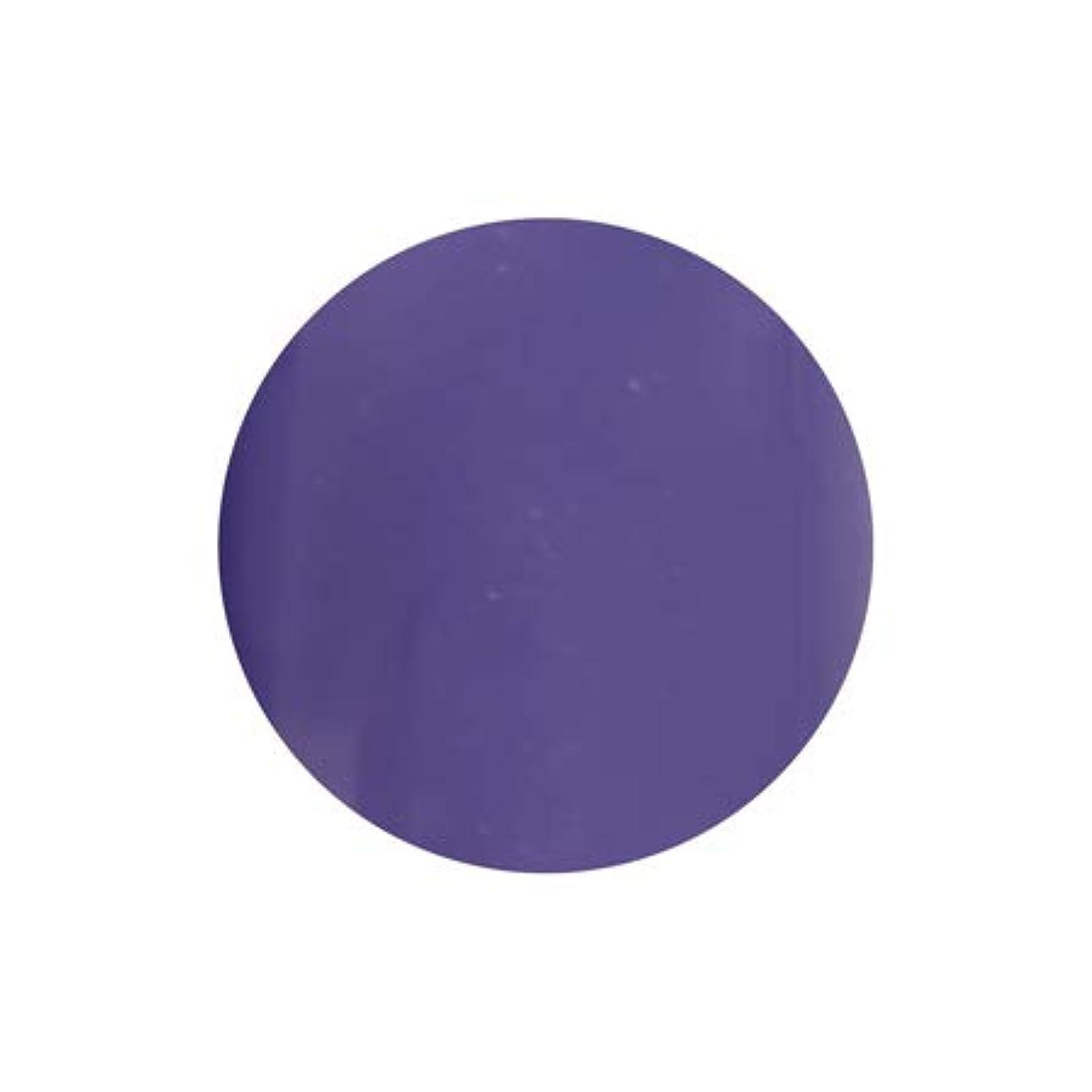 休戦シルク分類するT-GEL COLLECTION カラージェル D228 シフォンバイオレット 4ml