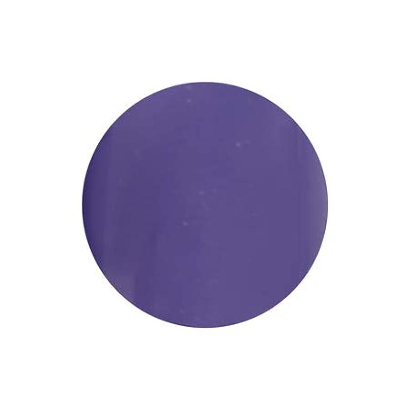 弱まるポール定説T-GEL COLLECTION カラージェル D228 シフォンバイオレット 4ml
