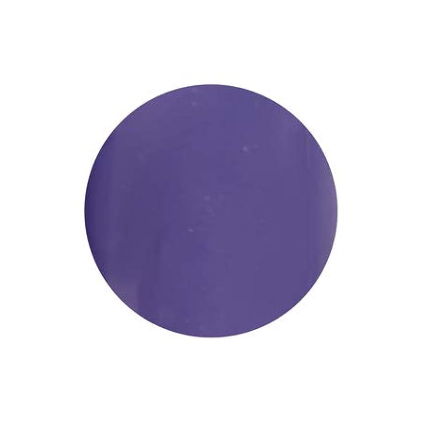 光沢収容するカッターT-GEL COLLECTION カラージェル D228 シフォンバイオレット 4ml
