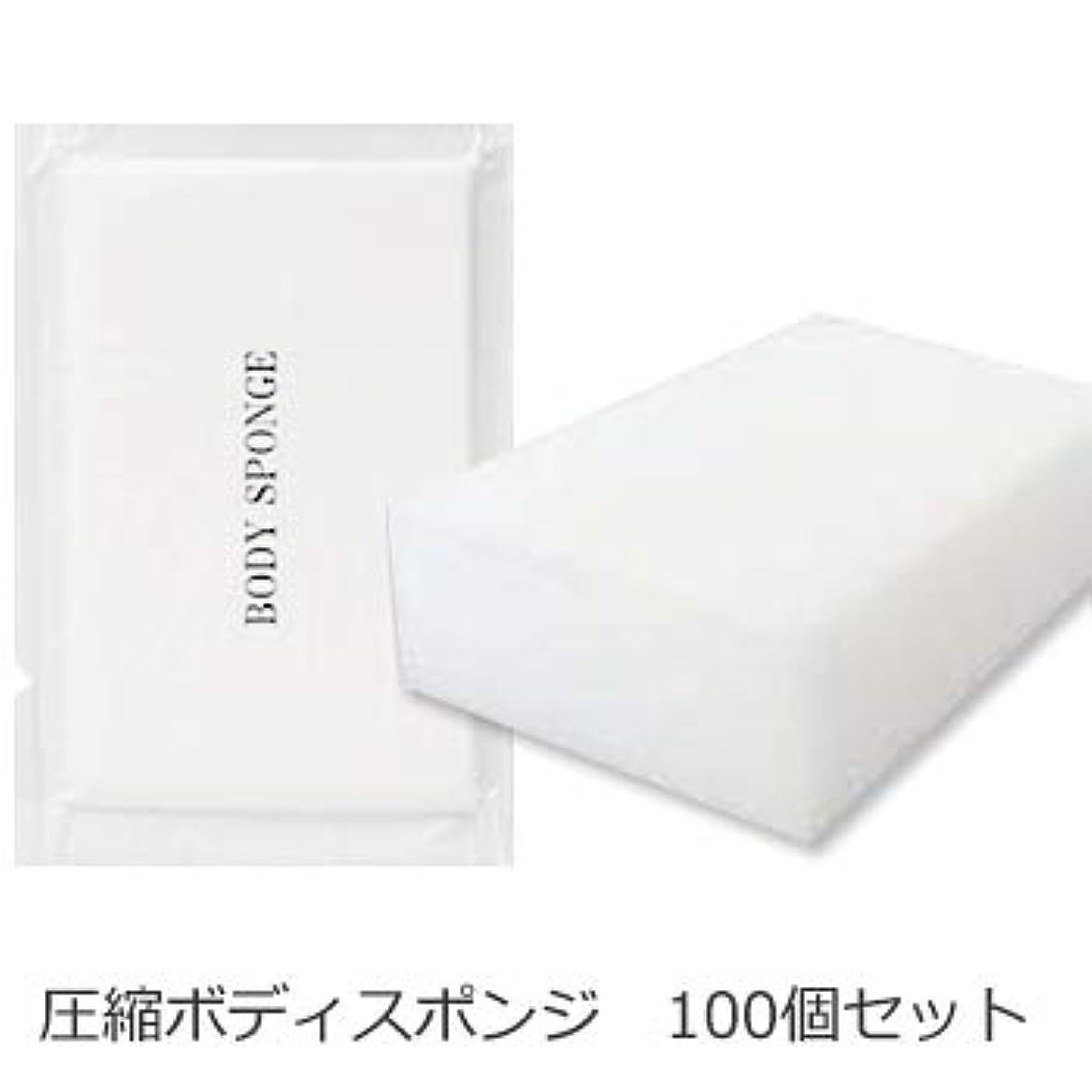 関与する最少早熟ボディスポンジ 海綿タイプ 厚み 30mm (1セット100個入)1個当たり14円税別