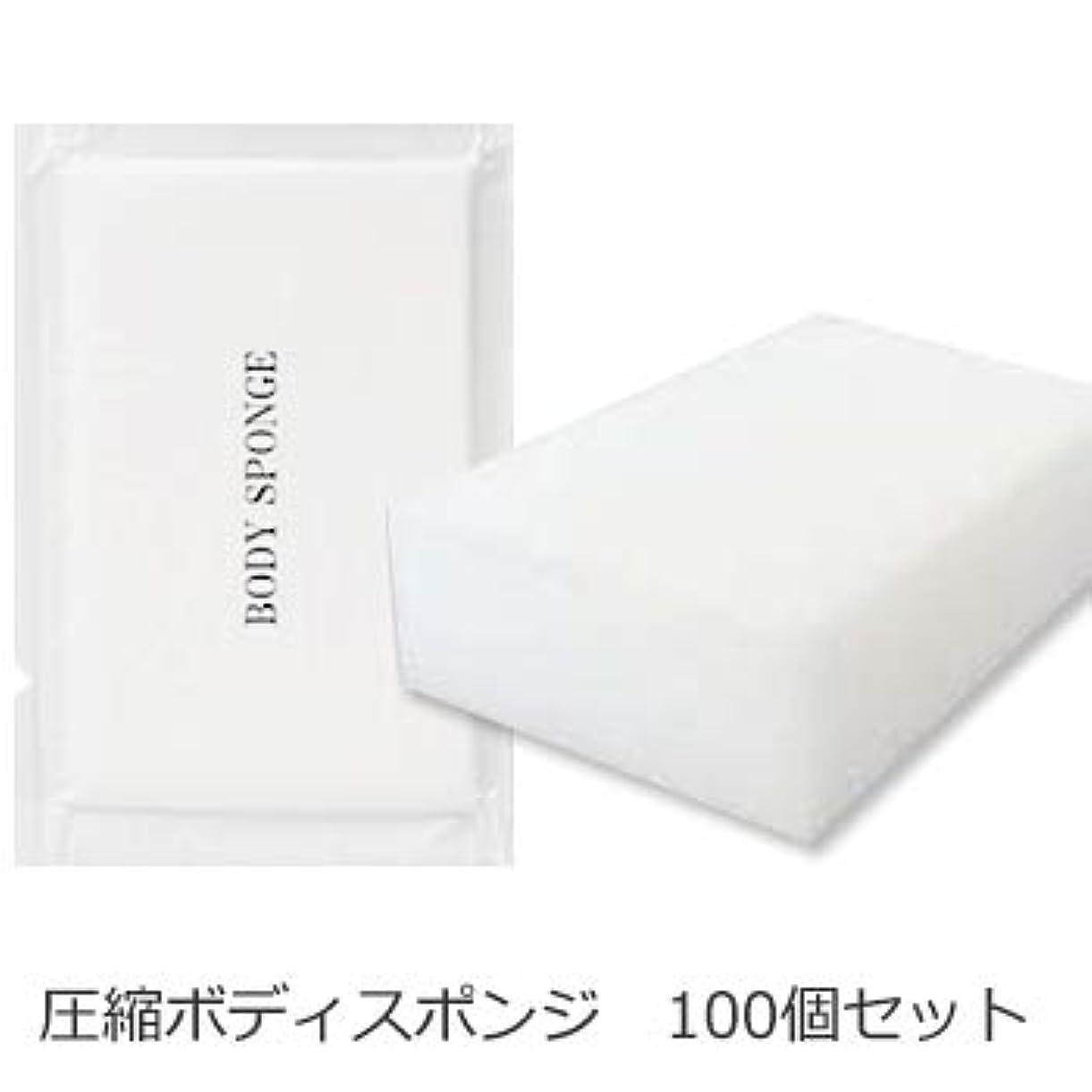 機転豊富買収ボディスポンジ 海綿タイプ 厚み 30mm (1セット100個入)1個当たり14円税別