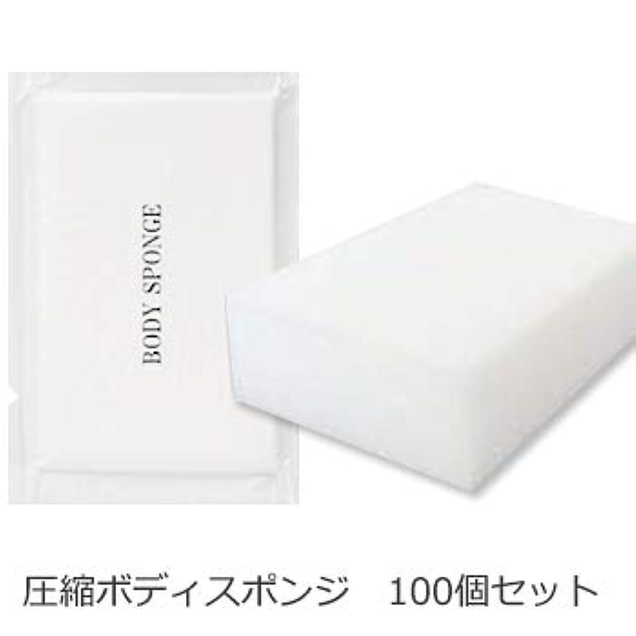 プレビュー学校教育ドラッグボディスポンジ 海綿タイプ 厚み 30mm (1セット100個入)1個当たり14円税別