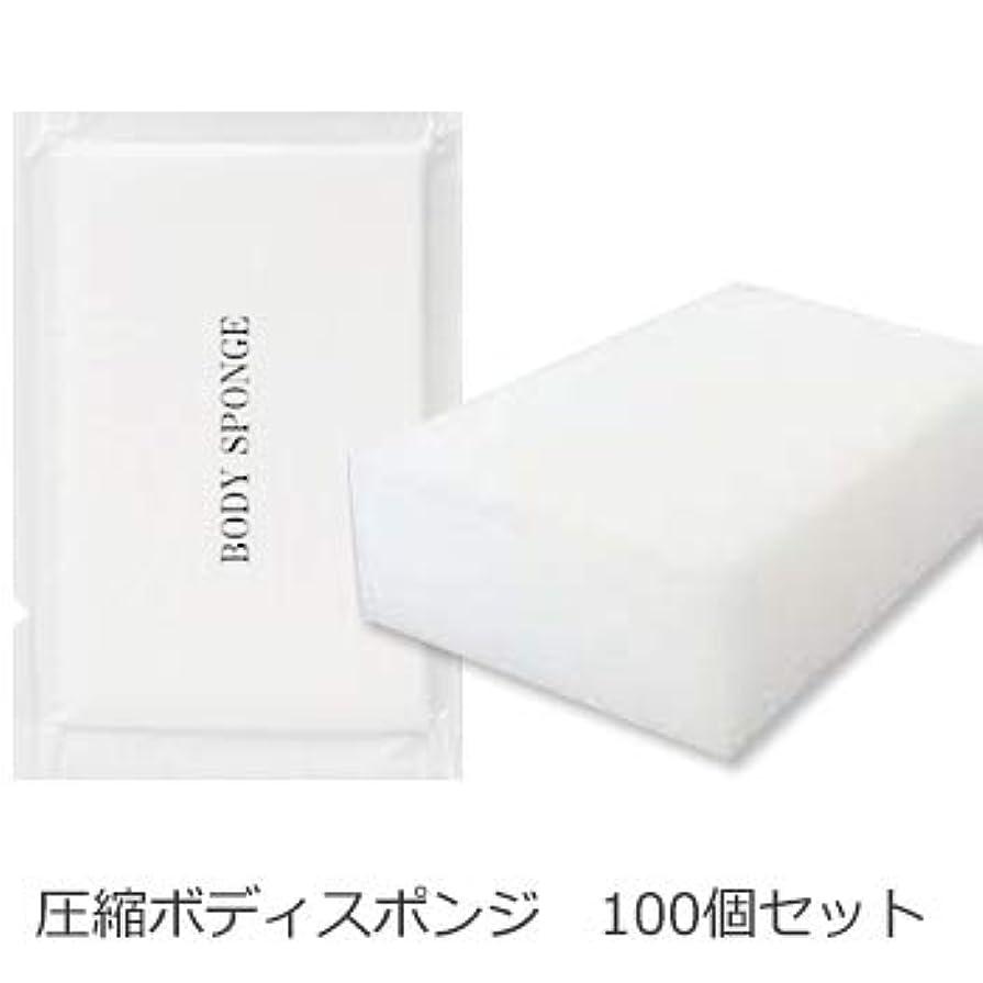 病気の起きろ見込みボディスポンジ 海綿タイプ 厚み 30mm (1セット100個入)1個当たり14円税別