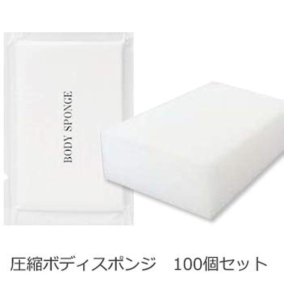 軍団侵入湾ボディスポンジ 海綿タイプ 厚み 30mm (1セット100個入)1個当たり14円税別
