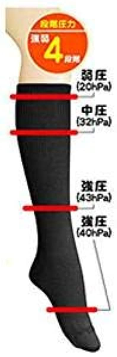 同種の珍しい固める超美圧ソックス ブラック 【2足組】