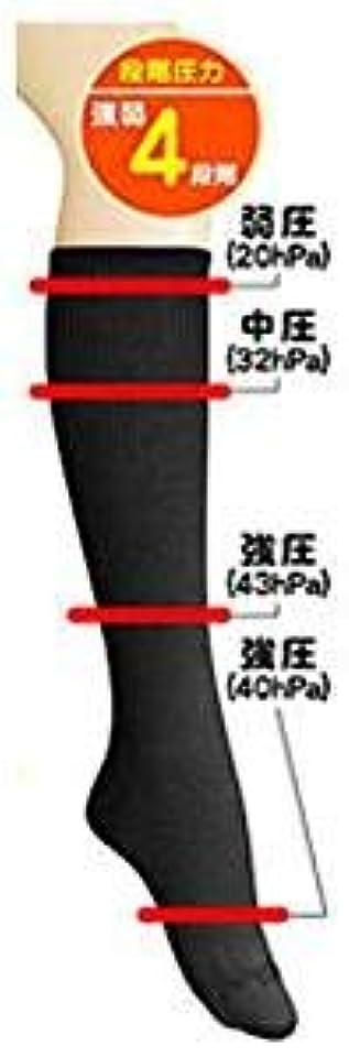 重要な直接相対サイズ超美圧ソックス ブラック 【3足組】