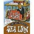 the Adventures of Sasha The San Francisco Sea Lion